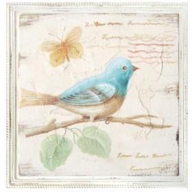 ΚΑΔΡΑΚΙ ΚΑΜΒΑΣ - BLUE BIRD/A